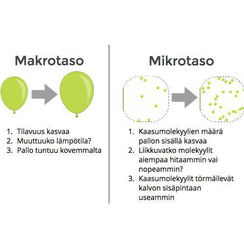 Makrotaso